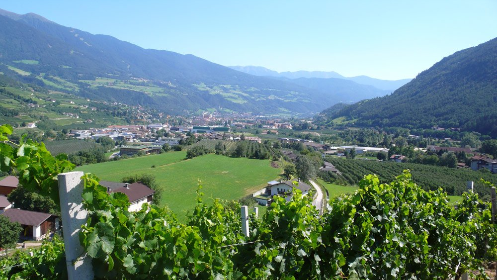 Holidays in the Isarco Valley – Among vineyards and rugged mountain ranges
